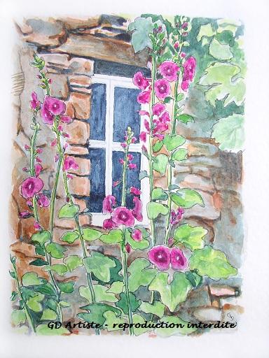 aquarelle,paysage,paysage aquarelle,drome sud,fenetre fleurie,rose trémière,gd artiste